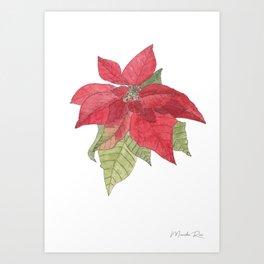Poinsettia- Red & Green Art Print