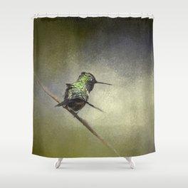 Feeling Frisky - Hummingbird Shower Curtain