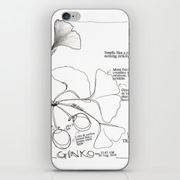 A ginko upon closer inspection: a pen and ink drawing from the California State Capitol iPhone Skin