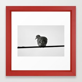 Bird on a Wire Framed Art Print