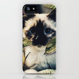 The Nature Cat iPhone Case