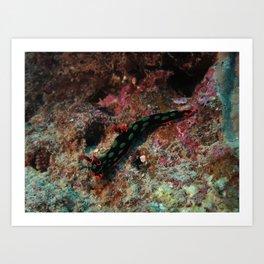 Red and green nembrotha Art Print