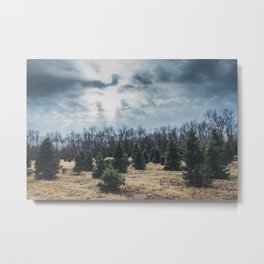 Tree Farm Metal Print