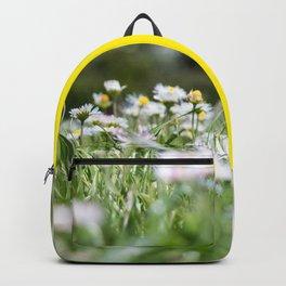 Hello Daisy! Backpack