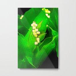 trush in bloom in the garden Metal Print