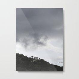 Gull Sky Metal Print