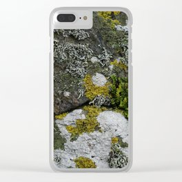 Coastal Rocks With Lichens and Ferns Clear iPhone Case