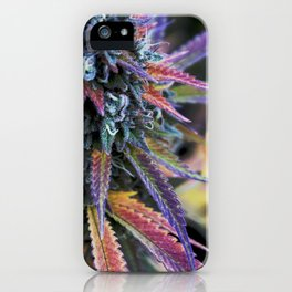CannaBliss iPhone Case