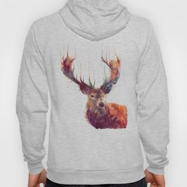 Red Deer // Stag Hoody