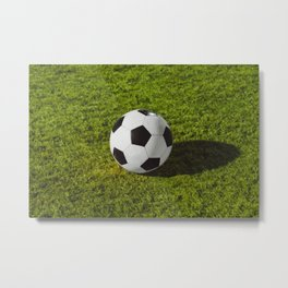 football in Station on green grass - Illustration Metal Print
