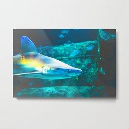 Rainbow Shark Underwater Metal Print
