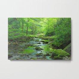 Rocky Forest Creek Metal Print