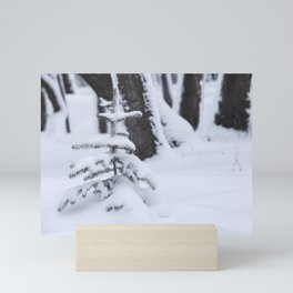 Beauty of Winter 33 Mini Art Print