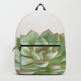 Green Succulent Backpack
