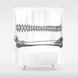 Femur spinal Shower Curtain