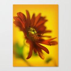 Red & orange Canvas Print