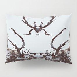 : canyon spirit : Pillow Sham