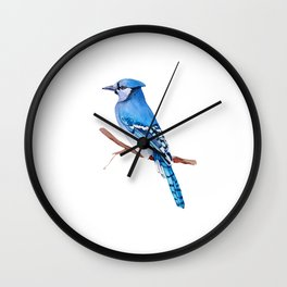 Watercolor illustration. Bright Blue Jay bird on white background. Wall Clock