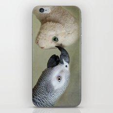Friendship iPhone & iPod Skin