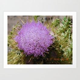 road trip, plant, nature, purple, plant top, pokey, sticker plant Art Print