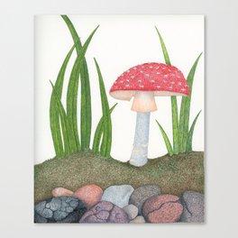Amanita Muscaria Canvas Print