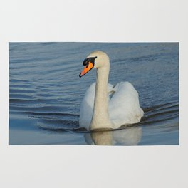 Elegant Mute Swan in the Harbor Rug