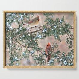 Winter Pair Cardinals (sq) Serving Tray