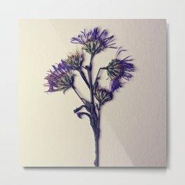 Pressed Flowers Metal Print