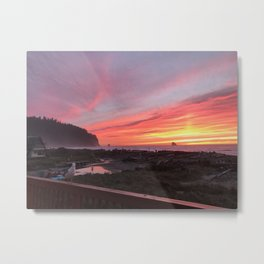 Gerry the Seagull at Sunset Metal Print
