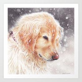 Winter dog colored pencils illustration Art Print