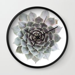 Succulent burst Wall Clock