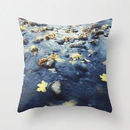Autumn Leaves, Color Film Photo, Analog Throw Pillow