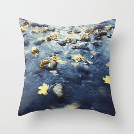 Autumn Leaves, Color Film Photo, Analog Throw Pillow