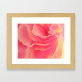 Curling blossom Framed Art Print