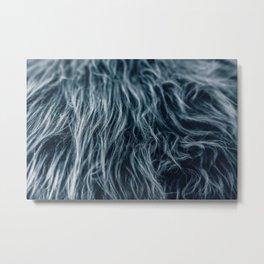 Fur Metal Print