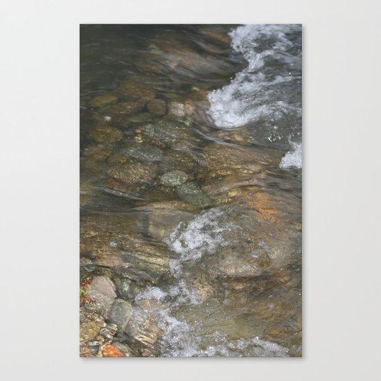 Natural Mosaic 1 Canvas Print
