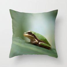 Mediterranean Tree Frog - Hyla meridionalis 8203 Throw Pillow