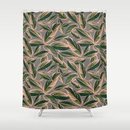 Calathea Leaves Pattern- Pink Green Gray Shower Curtain