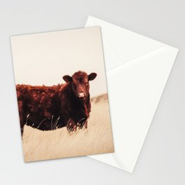 Red Angus Cow Art Stationery Cards