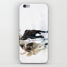 Gee!  Haw! iPhone & iPod Skin