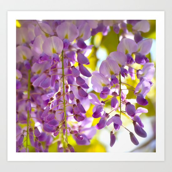 Spring Colors!  Art Print