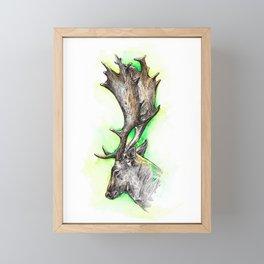 Fallow deer / watercolor painting / fineliner Framed Mini Art Print