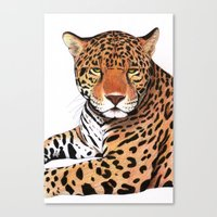 jaguar Canvas Prints featuring Jaguar by Savousepate