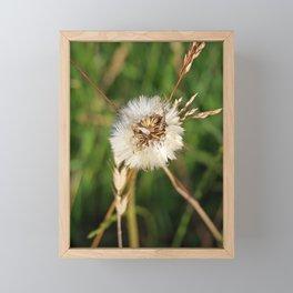 beauty faded thistle Framed Mini Art Print