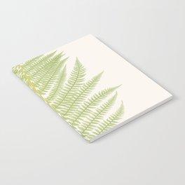 Ferns #2 Notebook