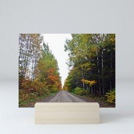 Forest Road in the Fall Mini Art Print