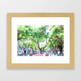 Tel Aviv - Rothschild Blvd. Framed Art Print