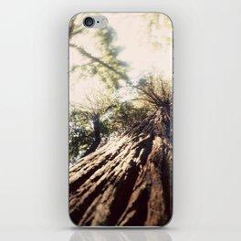 Too Tall Tree iPhone Skin