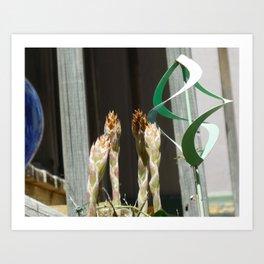 Dyckia flower buds Art Print
