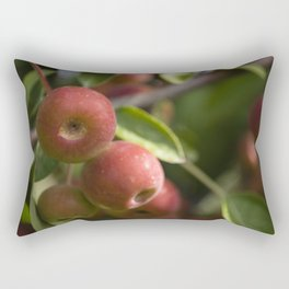 Red drupes #2 Rectangular Pillow